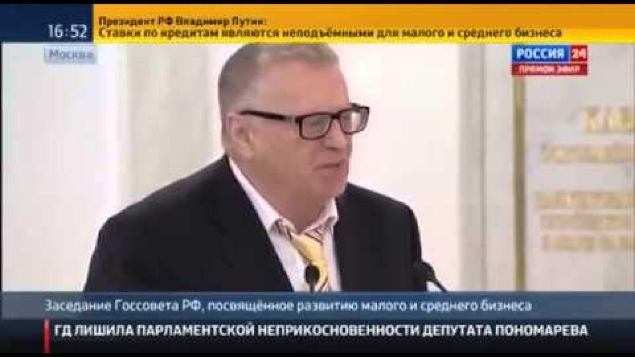 Жириновский о развитии предпринимательства в России